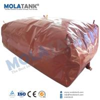 China Molatank home use 6m3 8m3 10m3 20m3 biogas digester/biomass plant system for cooking and heating on sale