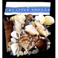 Seashell Packs