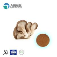 China Pure Natural Maitake Mushroom Extract Powder From Whole Body 2 Years Shelf Life on sale