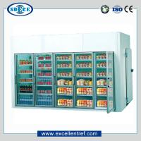 China supermarket walk in freezer/cooler for beverage/dairy display on sale