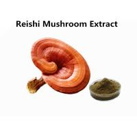 Red Reishi Mushroom Polysaccharides Extract Powder Supports Immune Health Function