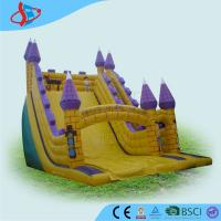 China Purple Huge Residential Inflatable Water Slides For Children Playground on sale