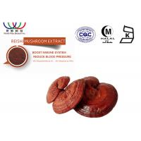 Buy cheap Food Grade Reishi Extract Powder , Organic Reishi Mushroom Powder 25kg / Drum from Wholesalers