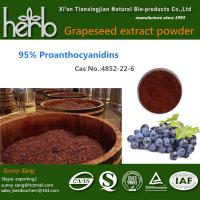Buy cheap Grape Seed Extract from Wholesalers