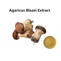 China Agaricus Blazei Extract Promoting Hematopoiesis , Ji / Pine Medicinal Mushroom Powder on sale