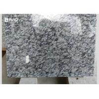 Black And White Granite Stone Tiles For Interior And Exterior Flooring / Wall