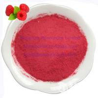 Buy cheap Sell Freeze Dried Raspberries Powder from Wholesalers