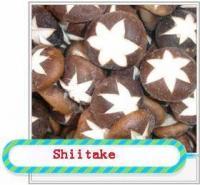 China Shiitake Mushrooms on sale