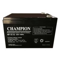 Buy cheap China Champion UPS Battery 12V14Ah NP14-12 Lead Acid AGM Battery VRLA Battery, SLA Battery from Wholesalers