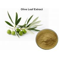 Natural Olive Leaf Extract For Kids , Organic Olive Leaf Extract Blood Pressure