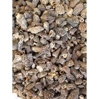 Buy cheap Factory Price Premium Grade(1-3CM)Chinese Dried Morel Mushroom without full stem from Wholesalers