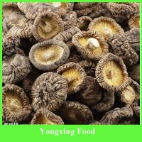 China china Dried Cultivated Flower shiitake Mushroom Wholesale on sale