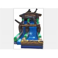 Buy cheap Popular Inflatable Water Slide ,  Commercial Inflatable Water Slide With Tree Shape from Wholesalers