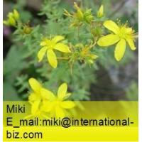 China St.Johns Wort Extract  on sale