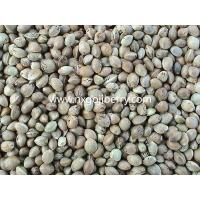 Buy cheap Hemp Seeds from wholesalers