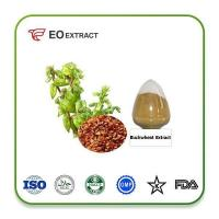 Buy cheap Buckwheat Extract from Wholesalers