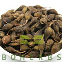 Buy cheap Forsythiae Fructus Weeping Forsythiae Capsule Forsythia Fruits Lian Qiao from Wholesalers