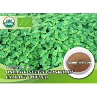 Buy cheap Organic nettle extract powder from Wholesalers