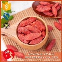 China Hot selling good quality goji berries supplier on sale
