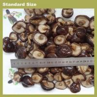 Buy cheap Mushrooms & Truffles packed shitake,lentinula edodes in drum from wholesalers