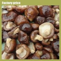 Buy cheap Mushrooms & Truffles cultivating edible shiitake mushrooms from Wholesalers