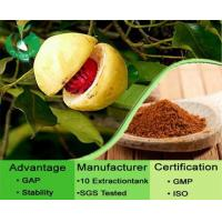 Buy cheap Nutmeg Extract Powder from Wholesalers