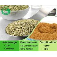 Buy cheap Fennel Seed Extract / Foeniculum Vulgare Powder from Wholesalers