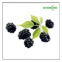 Buy cheap Acai Berry Extract from wholesalers