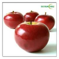 Buy cheap Apple extract from Wholesalers