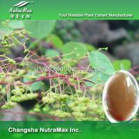 Buy cheap Stephania Cepharantha Extract (sales07 at nutra-max.com) from wholesalers
