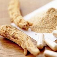 Buy cheap American Ginseng Extract from wholesalers