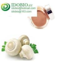 China Organic Bisporus Polysaccharide Agaricus Blazei Murill Mushroom Extract Agaricus Bisporus extract on sale