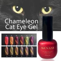 China Professional Nail UV Gel Curing Soak Off Glitter Cat Eye Gel Polish on sale