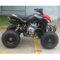 Big Headlight Street Legal Quad Bike 110cc , Adult Quad