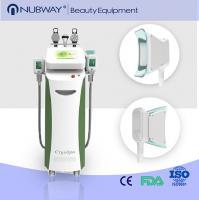 China 5 handles cryolipolysis slimming machine RF Cavitation Cryolipolysis Machine on sale