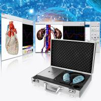China Metatron 4025 Hunter NLS Diagnostic Bioresonance Scanner With Spanish/German/English/Polish Software on sale