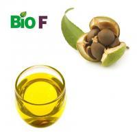 Pure Camellia Japonica Oil  For Skin Care Food Grade AndCosmetics Grade