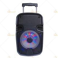 DJ Speaker Boxes Cabinets Wireless , 10 Inch Speaker Box