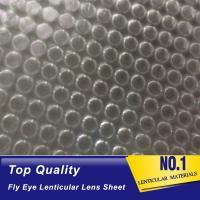 China OK3D fly eye 3d sheet new product dot lens sheet 3d effect 360 degrees lenticular sheet arrays fly eye lenses sheet on sale