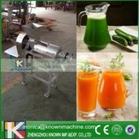 China Screw Type Cashew Apple Juicer Machine/Cucumber juice Maker marketing plan on sale