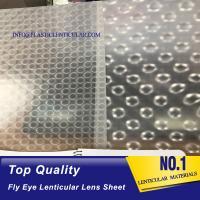 China PLASTICLENTICULAR 3d effect 360 degrees lenticular sheet arrays fly eye lenses sheet on sale