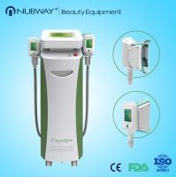 China Double Heads Portable Fat Freezing Machine Home Use Cryolipolysis body slimming machine on sale