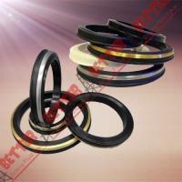 China SPM FMC WECO Hammer Union Seal Viton lip seal brass back on sale