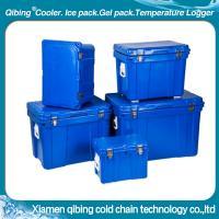 Blue rotomold cooler box autrial pupular style
