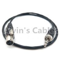 China SONY D11 Camera Audio Cable 3.5 Audio Plug Conversion 3.5 Pin Audio Plug To 3 Pin MINI XLR on sale
