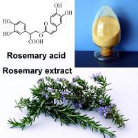 China Fine Powder Rosemary Leaf Extract Slightly Water Soluble Carnosic Acid Ursolic Acid on sale