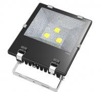 China 10000K Customized CCT LED Floodlights IP66 AC240V 150W Aquarium Lighting on sale