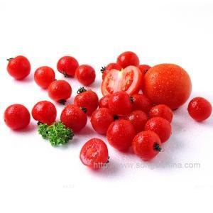 Buy cheap Lycopene Softgel from Wholesalers