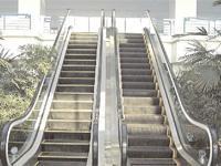Buy cheap Escalators from Wholesalers
