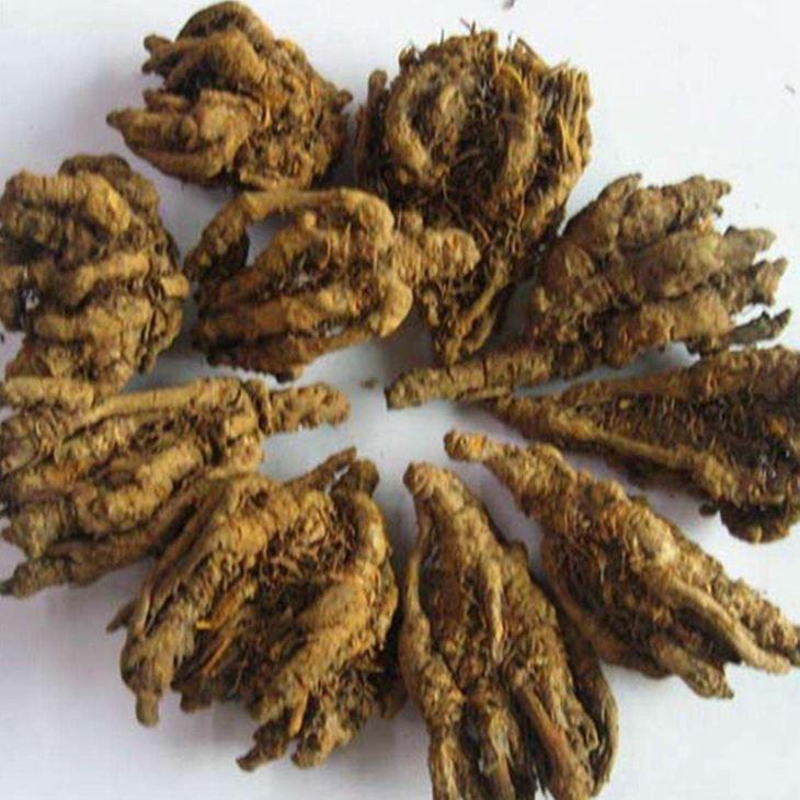 Buy cheap Berberine Hydrochloride from Wholesalers